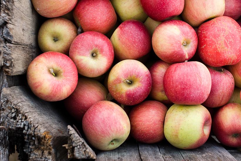 hartland apple orchard virginia