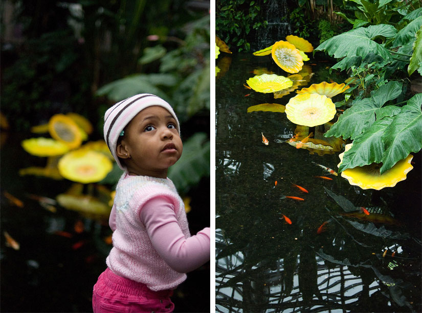 little girl by a pond with yellow flowers
