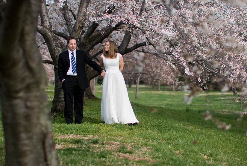 cherry blossoms at hains point - bride and groom
