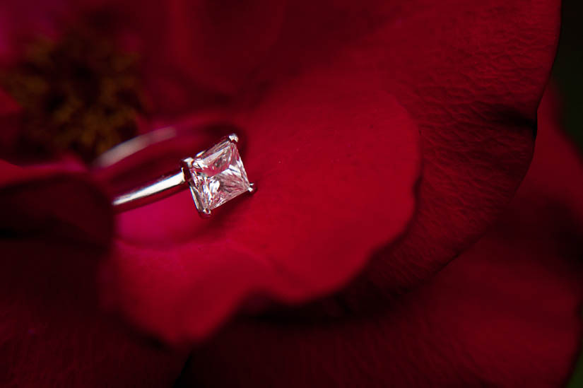 engagement ring on a red flower