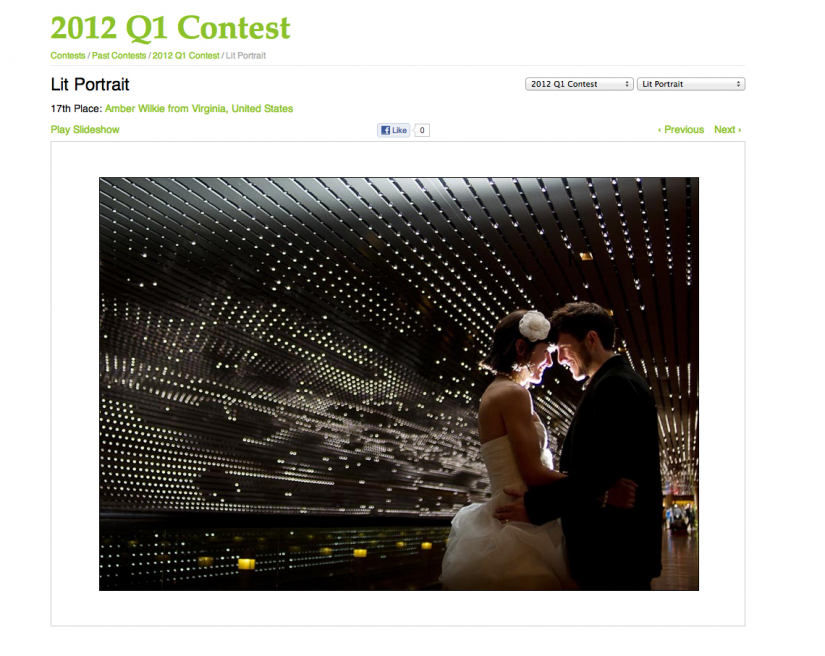 WPJA award - photojournalism in weddings - 2012 Q1
