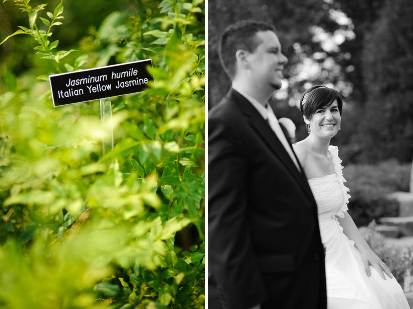 wedding portraits at brookside gardens