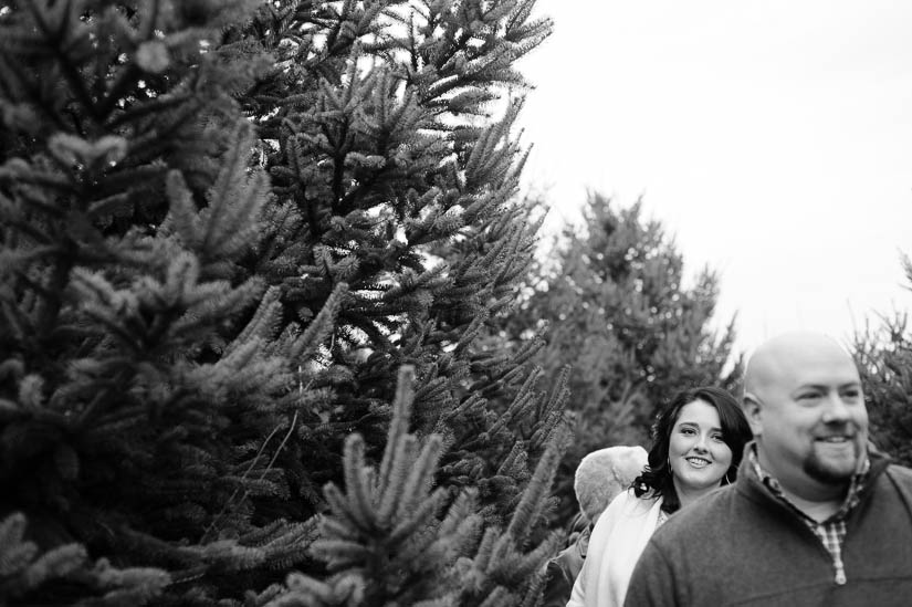 family photo session at christmas tree farm