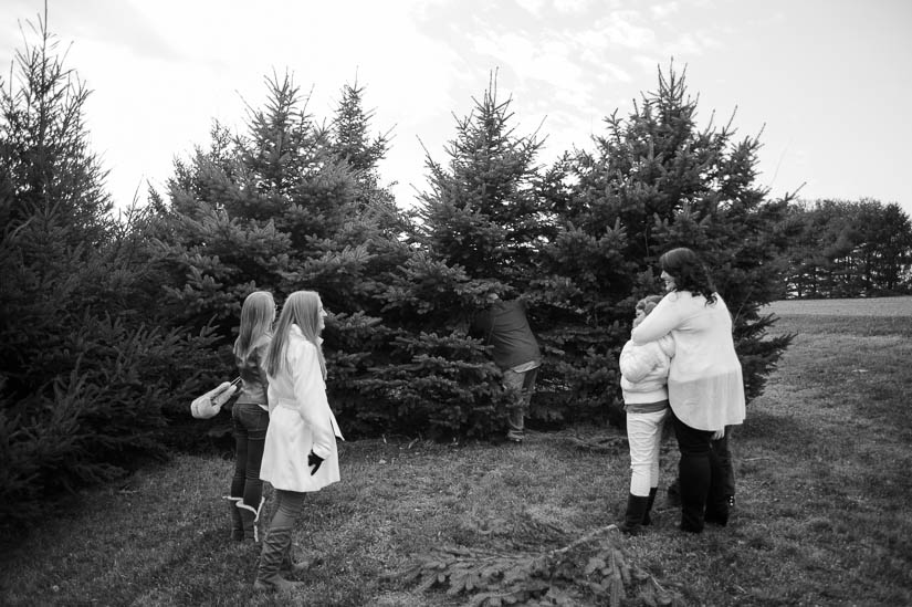 documentary family photography at christmas tree farm