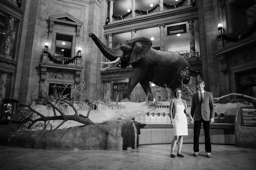 natural history museum engagement photography