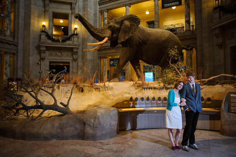 engagement photos in the natural history museum