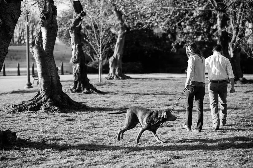 washington dc engagement session with a dog